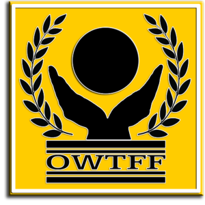 nice-logo-owtff