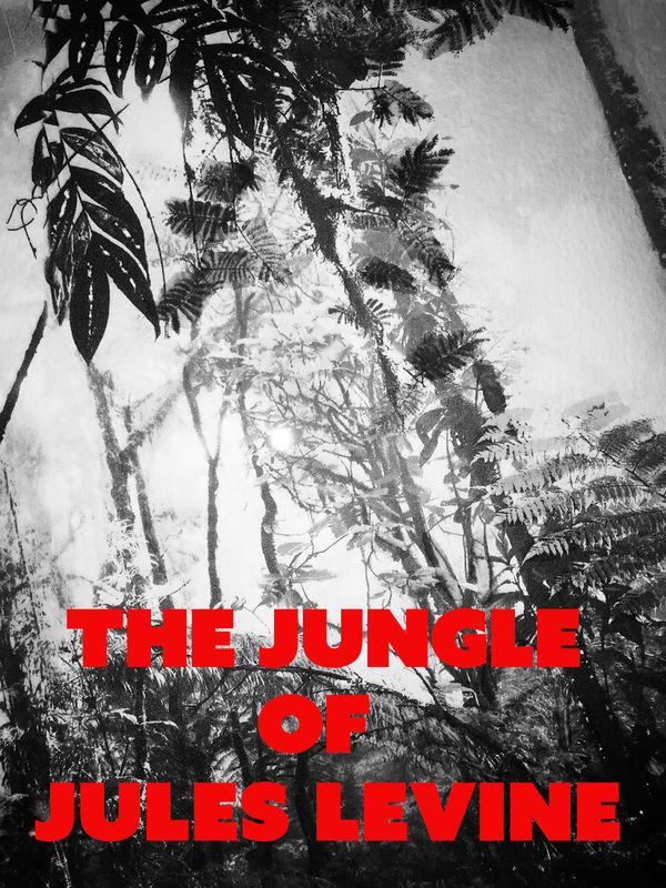 The Jungle Of Jules Levine Poster
